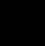 ss_logo_copy3_1418090168__06849